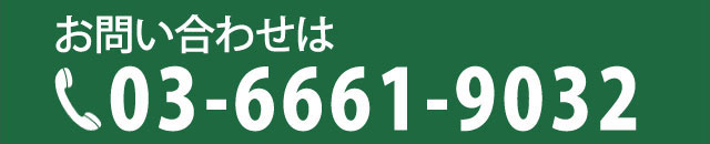 03-6661-9032
